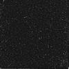 Black (25)